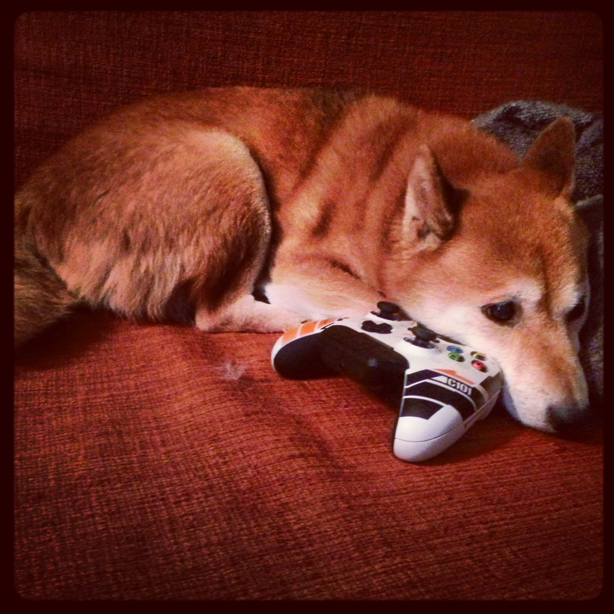 Taka Hana playing Xbox